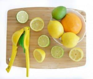 Citrus Squeezer