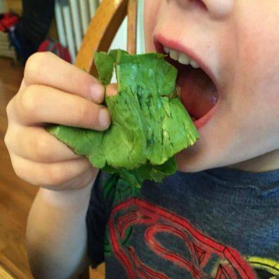 Salad Bars at Home Get Kids Eating More Veggies