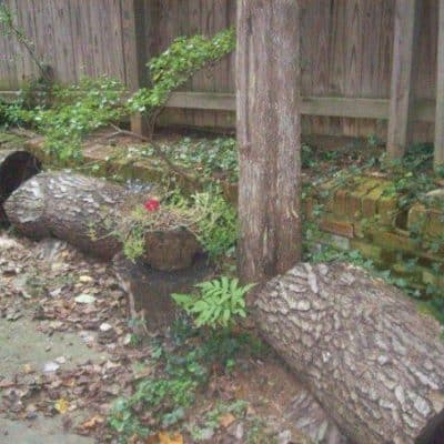 How To Use Eco-Friendly Gardening Techniques to Create and Urban Oasis In Your Yard