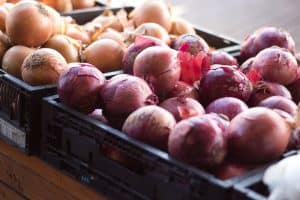 Farmer's Market Onions